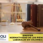 Sinopsis, Normatividad de los Riesgos Laborales en Colombia